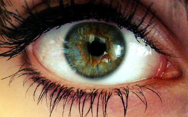 Một số bệnh và các rối loạn ảnh hưởng đến giác mạc